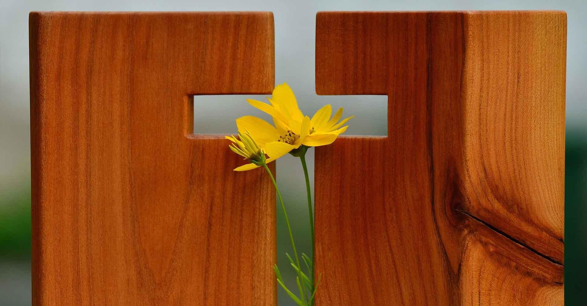cross-wood